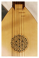 7 course lute detail