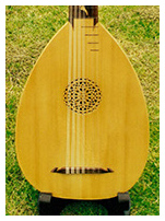 6 course lute detail